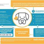 В Подмосковье работает программа регулирования численности животных без владельцев
